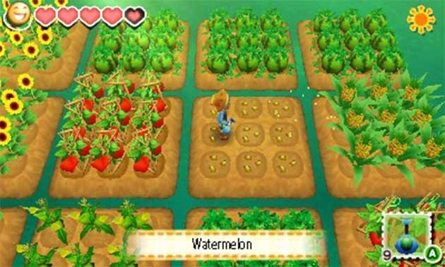 nintendon-guida-story-of-seasons-coltivazioni-screens-estate
