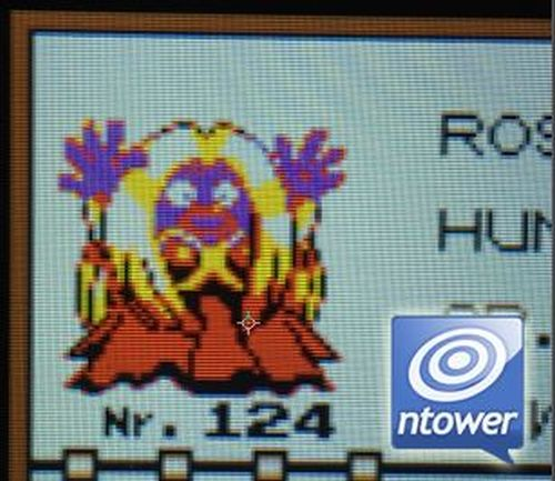 Pokémon Blu, Rosso e Giallo Jynx glitch di Mew